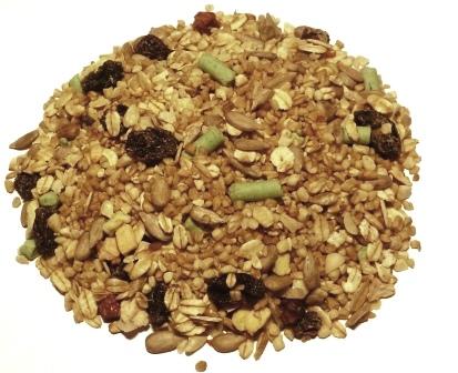 Blackbird & Thrush Food
