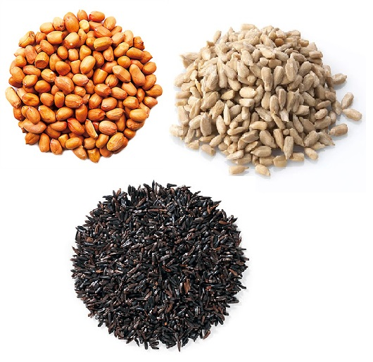 Peanuts, Sunflower, Niger & Seeds