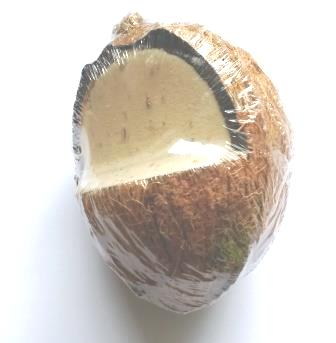Whole Suet Filled Coconut Shell