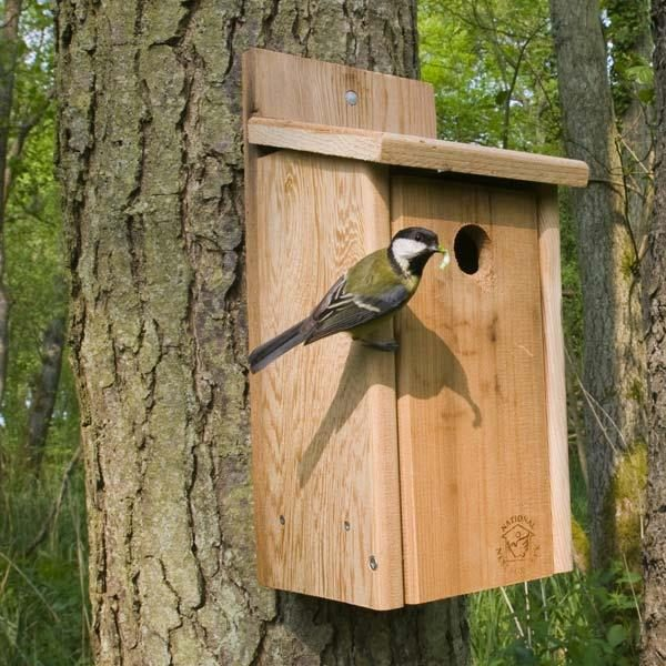 The Official Wooden Nest Box